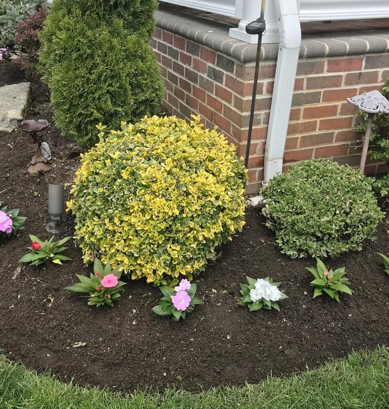 Best Flower Beds In Front Of House Ideas (That'll Seriously Upgrade Your Home)