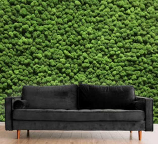 zen-den-moss-green