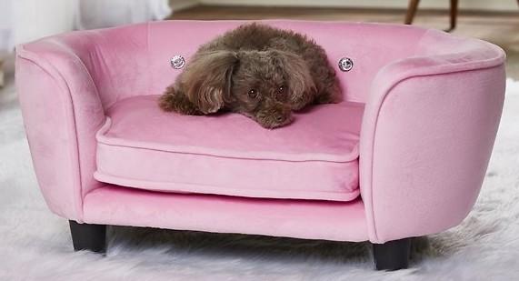 dog-bed-sofas